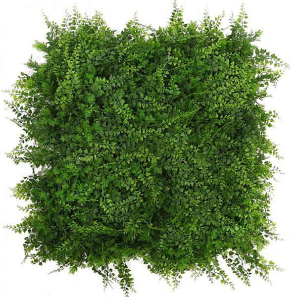 19-placa-plantas-helechos-50×50-1