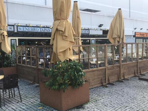 Bar Enebro (Madrid)